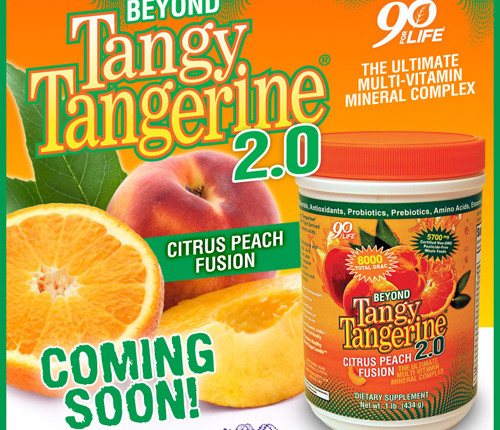 Beyond Tangy Tangerine 2.0 Web Marketing Flyer